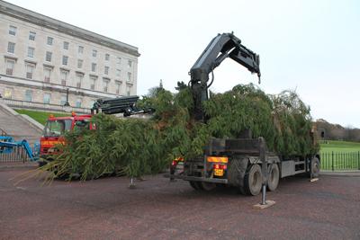 Stormont's 15m christmas tree dwarfs M.Large crane truck.