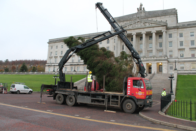 M.Large crane hire operators work top n tail to install Stormont Christmas Tree