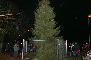 Ballyrobert village residents attending the Christmas Lights Switching on event 2013 with tree provided by M.Large