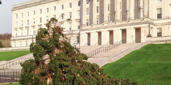 Stormont-tree-blown-over-by-high-winds-posted-on-twitter
