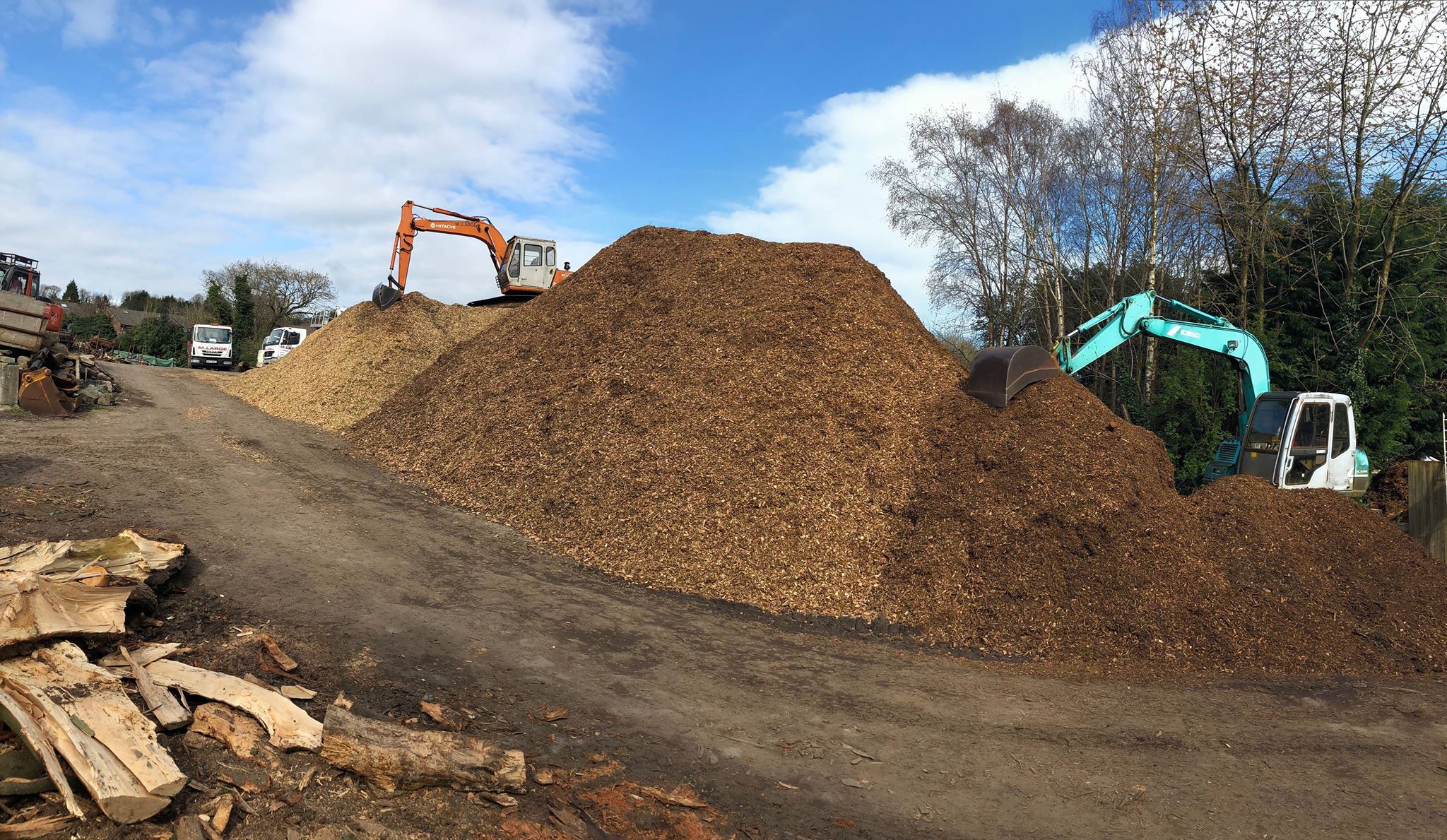 Wood chip mulch for sale